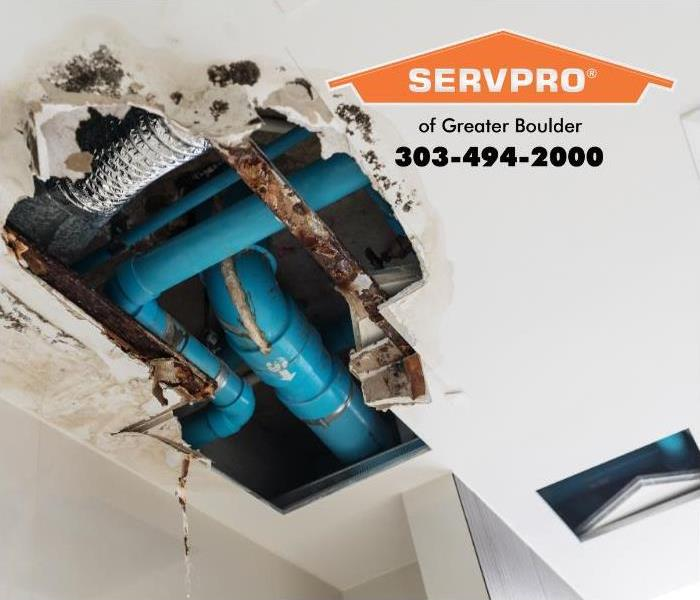 The ceiling of an office is torn back to reveal water damage and microbial growths.