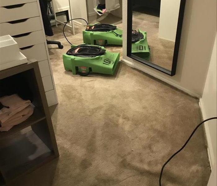 Water damage on Superior carpet