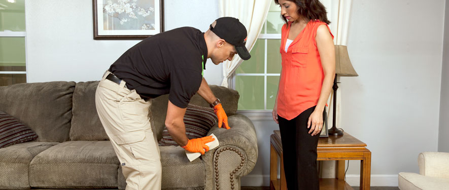 Boulder, CO carpet upholstery cleaning
