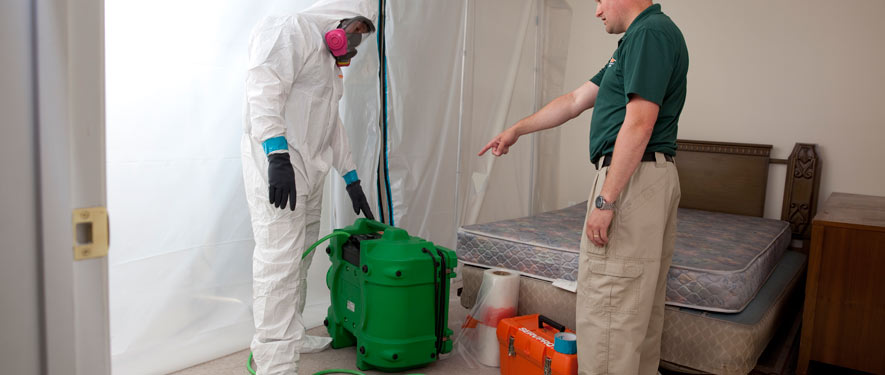Boulder, CO mold removal process